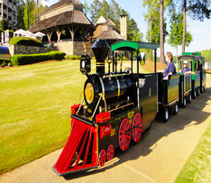 Trackless Train Package